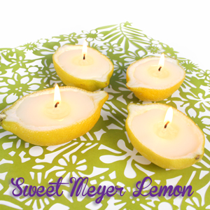 Sweet Meyer Lemon Candles in Lemon shells